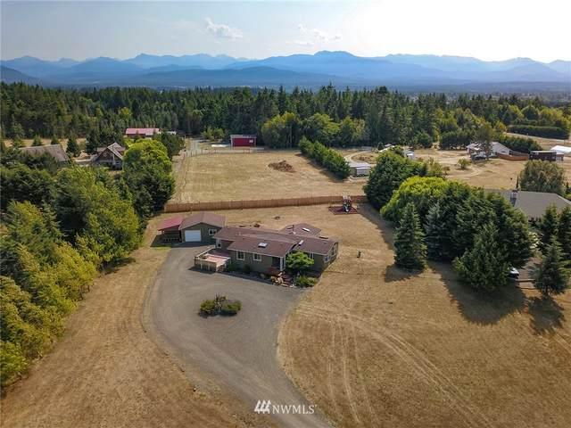 102 Deer Trails Way, Sequim, WA 98382 (#1817321) :: Better Properties Real Estate