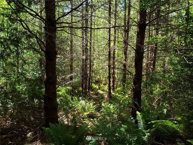0 Old Coyle Road, Quilcene, WA 98376 (#1817532) :: Pacific Partners @ Greene Realty