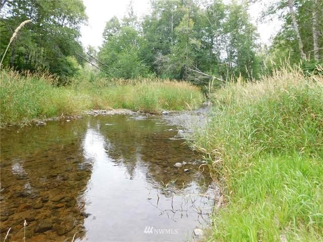 1100 State Route 7, Morton, WA 98356 (#1817791) :: Ben Kinney Real Estate Team