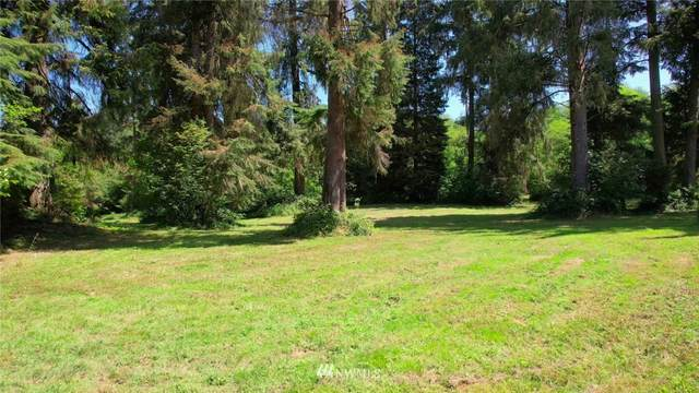 4 Spruce Place, Cathlamet, WA 98612 (#1818227) :: Franklin Home Team