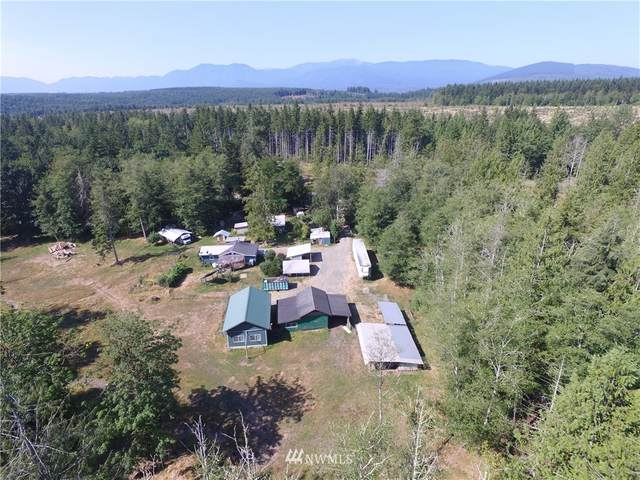 0 Berry Hill Lane, Port Townsend, WA 98368 (#1818433) :: Icon Real Estate Group