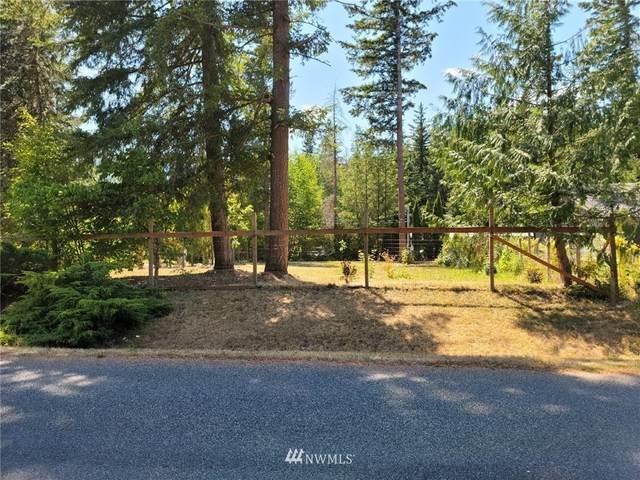 6225 Shamrock Road, Maple Falls, WA 98266 (#1818460) :: M4 Real Estate Group