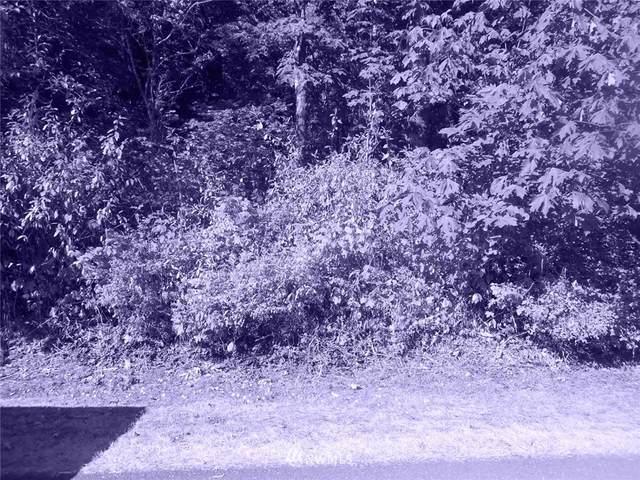 16001 Shuksan Rim Drive, Glacier, WA 98244 (MLS #1819287) :: Reuben Bray Homes