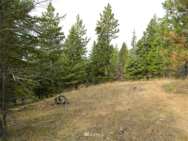 111 Tbd High Country Drive, Tonasket, WA 98855 (MLS #1819393) :: Nick McLean Real Estate Group
