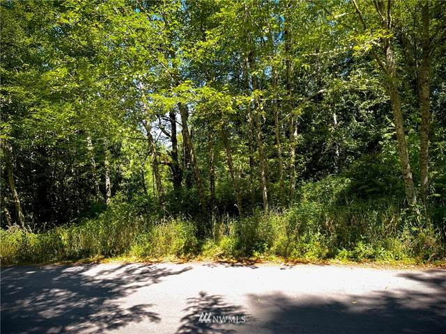 0 Squalicum Mountain Road, Bellingham, WA 98226 (#1819444) :: Better Properties Real Estate