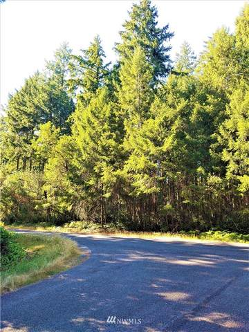 11515 Greenwood Drive, Anderson Island, WA 98303 (#1819666) :: Lucas Pinto Real Estate Group