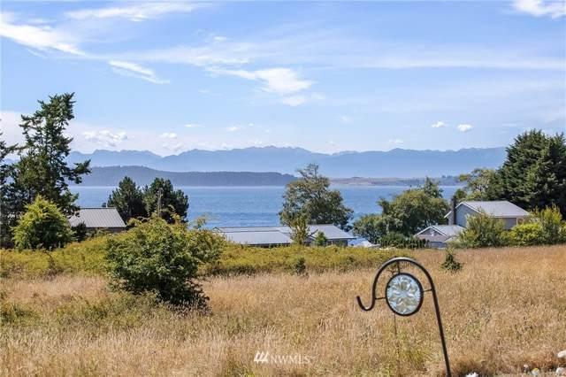 2900 Pear Point Road, San Juan Island, WA 98250 (#1819792) :: The Shiflett Group