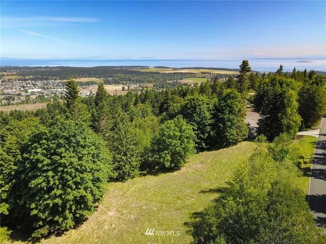 9999 Ravens Ridge, Sequim, WA 98382 (#1819884) :: Ben Kinney Real Estate Team
