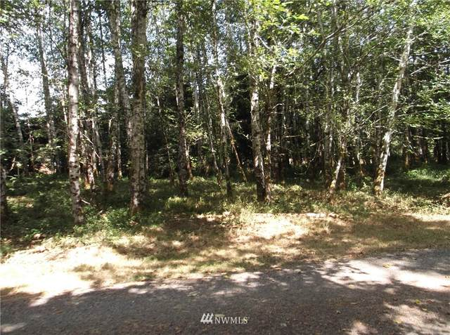 1 Romano Lane, Tokeland, WA 98590 (#1819998) :: Northern Key Team