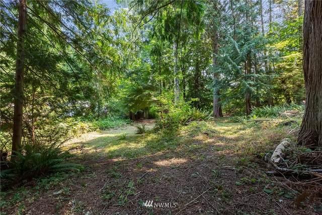 1 xx Whale Road, Brinnon, WA 98320 (#1820549) :: The Shiflett Group