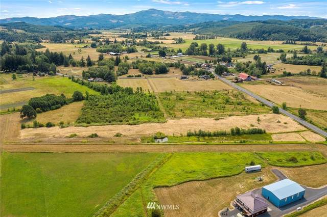 0 Curtis Hill Road, Boistfort, WA 98532 (#1820860) :: Icon Real Estate Group