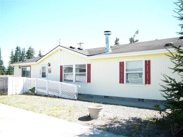 10 Winterhawk Street, Sequim, WA 98382 (#1820912) :: Stan Giske