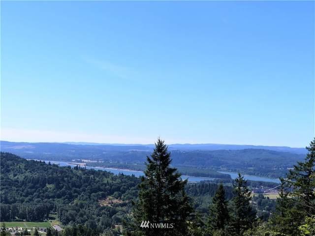 1065 Mt Pleasant Road, Carrolls, WA 98626 (MLS #1823356) :: Reuben Bray Homes