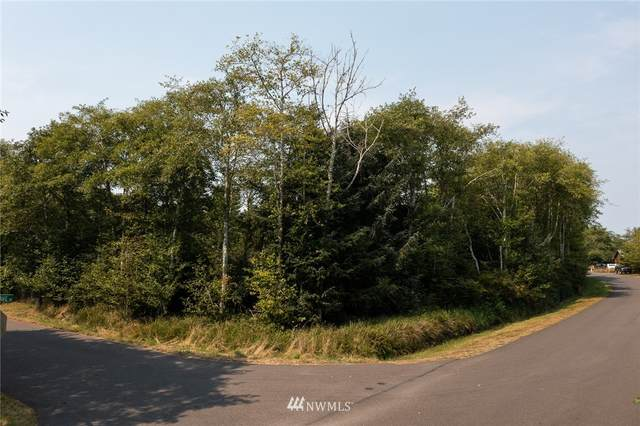 301 Olympic View Avenue NE, Ocean Shores, WA 98569 (#1824735) :: Keller Williams Western Realty