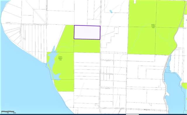 11712 Claussen Road, Anderson Island, WA 98303 (#1825379) :: Franklin Home Team