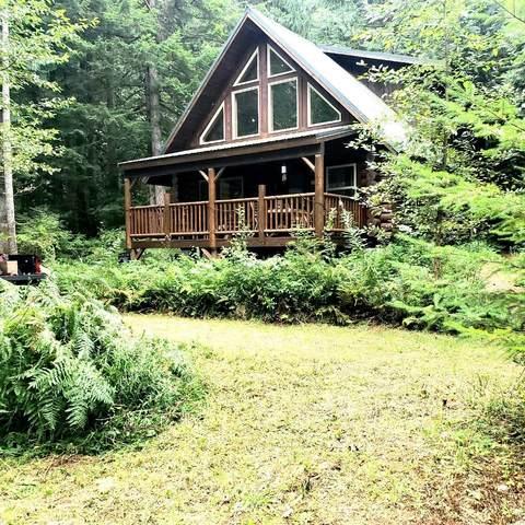 69523 NE Money Creek Road, Skykomish, WA 98288 (#1825514) :: Franklin Home Team