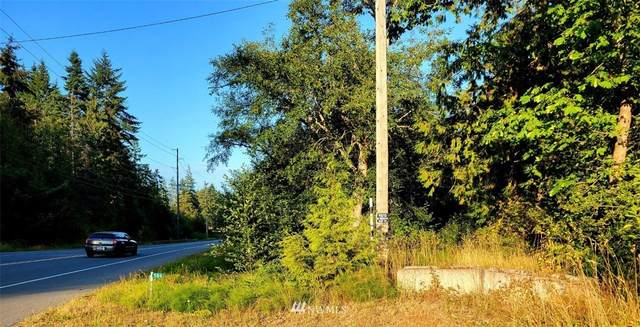 584 Old Olympic Highway, Port Angeles, WA 98362 (#1825707) :: NextHome South Sound