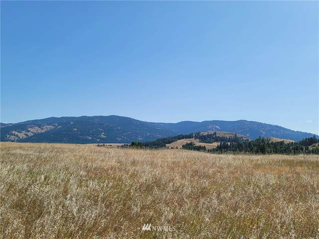 744 Mary Ann Creek Road, Oroville, WA 98844 (MLS #1827537) :: Nick McLean Real Estate Group