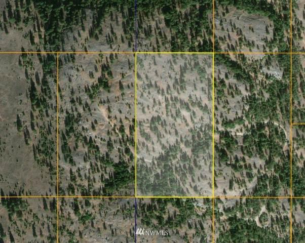 1 TBD Patterson Creek Road, Tonasket, WA 98855 (MLS #1828044) :: Nick McLean Real Estate Group