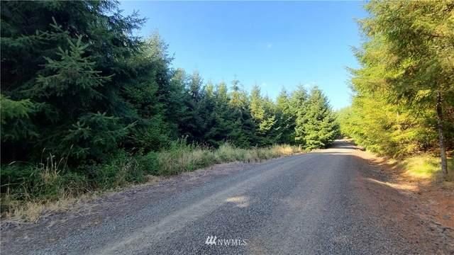 0 Lot 17 Grand Ridge Road, Toutle, WA 98649 (#1828077) :: Better Properties Real Estate