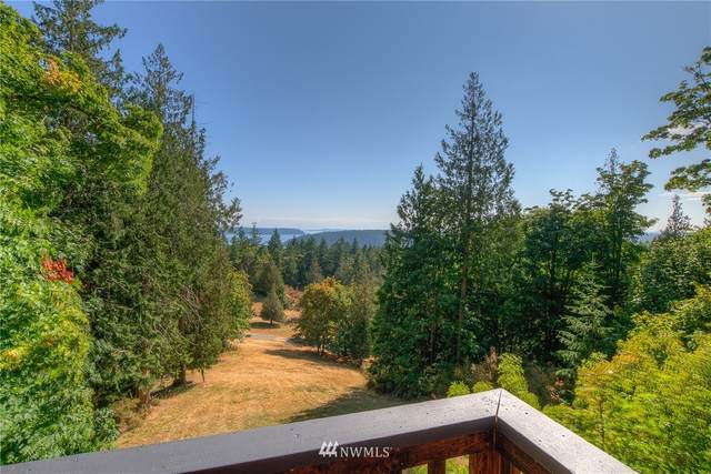 503 Foster Point Road, Orcas Island, WA 98245 (#1828359) :: Icon Real Estate Group