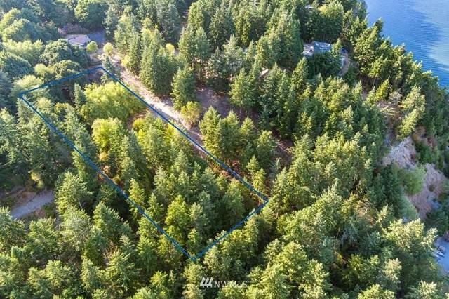 0 S Pheasant Run Road, Coupeville, WA 98239 (#1828460) :: Pacific Partners @ Greene Realty