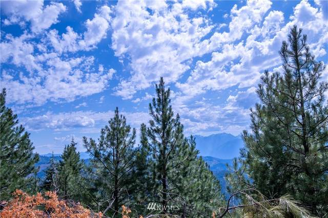 31 Forest Service Rd 400, Leavenworth, WA 98826 (#1828462) :: Simmi Real Estate