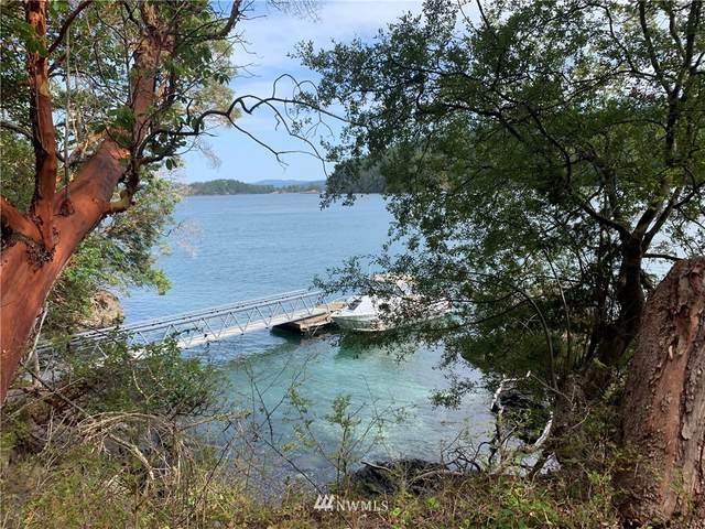 333 Rocky Road, Crane Island, WA 98245 (#1828527) :: Pacific Partners @ Greene Realty