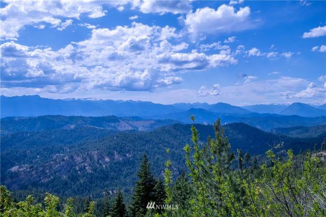33 Forest Service Rd 400, Leavenworth, WA 98826 (#1829637) :: The Snow Group