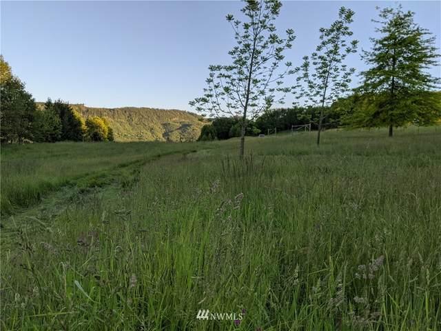 150 Elk Ridge Road, Mossyrock, WA 98564 (#1829670) :: Pacific Partners @ Greene Realty