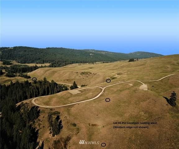 367 B Mary Anne Creek Road, Oroville, WA 98844 (MLS #1829742) :: Nick McLean Real Estate Group