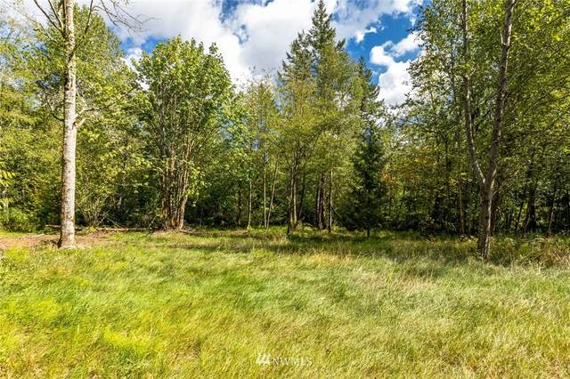 9092 Stein Road, Custer, WA 98240 (#1829888) :: The Snow Group