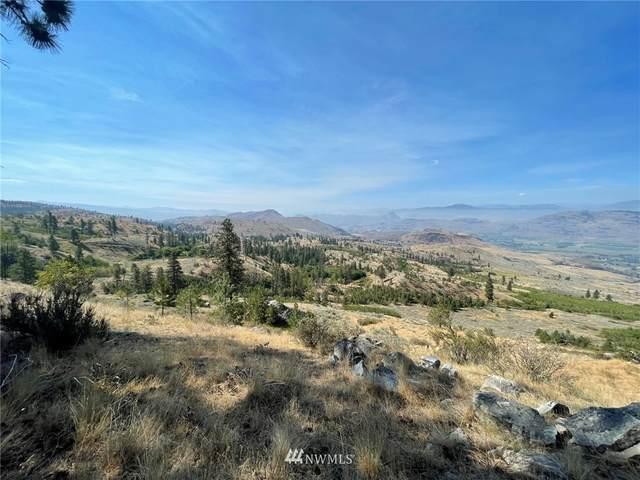 431 Swanson Mill Road, Oroville, WA 98844 (MLS #1830334) :: Nick McLean Real Estate Group