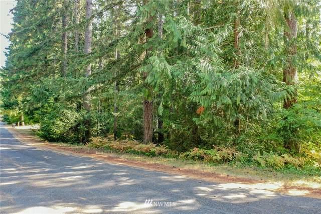 111 N Duckabush Loop W, Hoodsport, WA 98548 (#1831142) :: The Shiflett Group