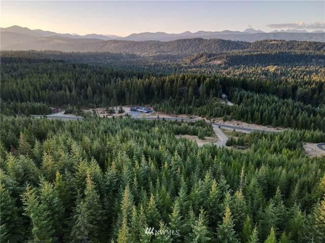 631 Whisper Creek Drive, Cle Elum, WA 98922 (MLS #1831496) :: Nick McLean Real Estate Group