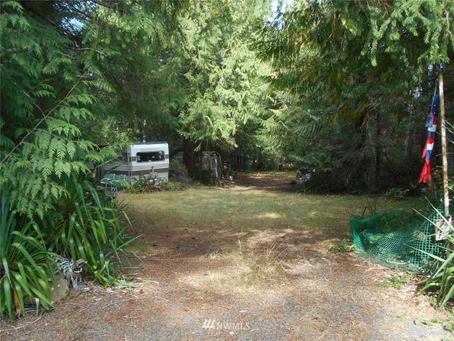 10 Azalea Lane, Brinnon, WA 98320 (#1831762) :: Stan Giske