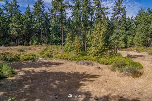3401 Hastings Avenue, Port Townsend, WA 98368 (#1832496) :: The Kendra Todd Group at Keller Williams