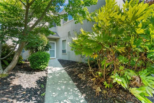 8424 25th Avenue SW C, Seattle, WA 98106 (#1832502) :: The Snow Group