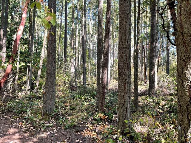 0 Blk 47 Lot 1 & 2, Port Townsend, WA 98368 (#1832845) :: Pacific Partners @ Greene Realty
