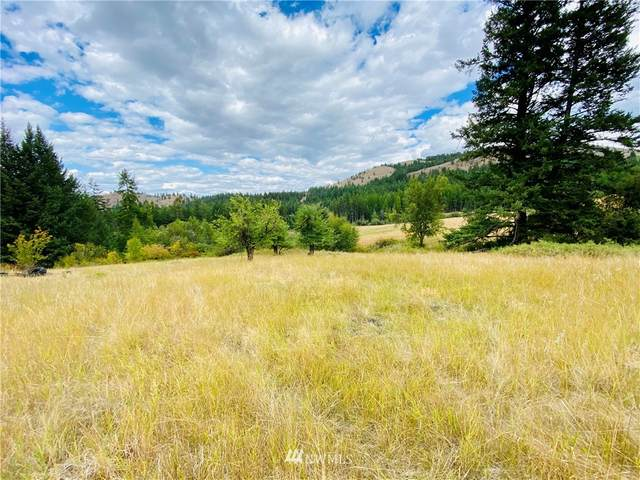 219 Wolfe Camp Road, Republic, WA 99166 (#1832961) :: Pacific Partners @ Greene Realty