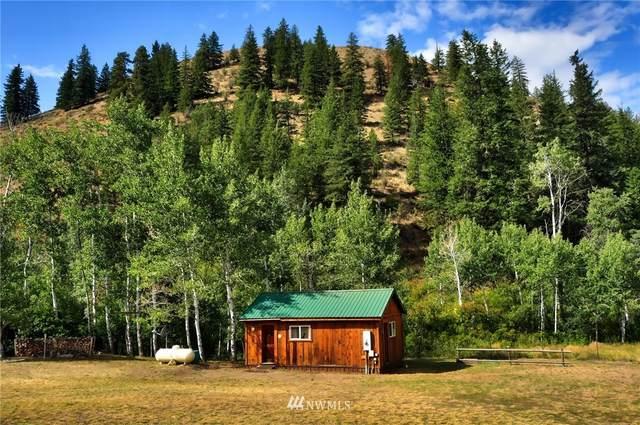 26 Davis Lake Road, Winthrop, WA 98862 (MLS #1832972) :: Nick McLean Real Estate Group