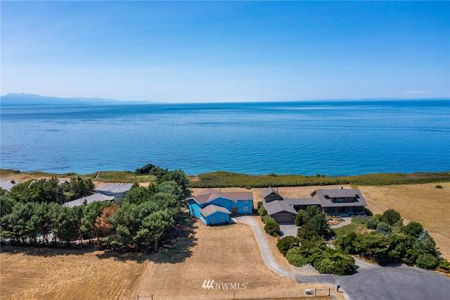 841 Ocean Bluff Lane, Coupeville, WA 98239 (#1833058) :: Pacific Partners @ Greene Realty