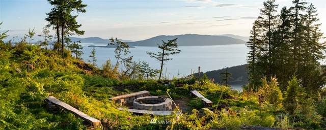 0 Lot 5 Chuckanut Heights Drive, Bellingham, WA 98225 (#1833293) :: Icon Real Estate Group