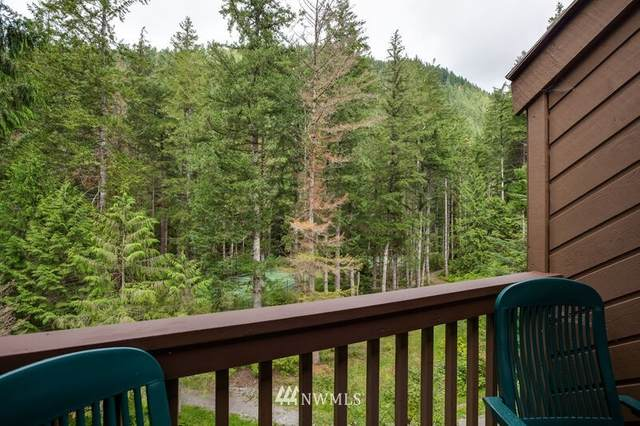 10500 Mt. Baker Highway #1008, Deming, WA 98244 (#1833621) :: The Snow Group