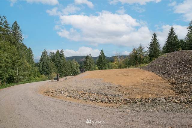 187 Lakeview Drive, Mossyrock, WA 98564 (#1833826) :: Pacific Partners @ Greene Realty