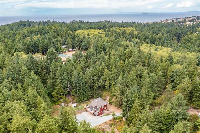 2550 Caraway Lane, Coupeville, WA 98239 (#1833851) :: Pacific Partners @ Greene Realty