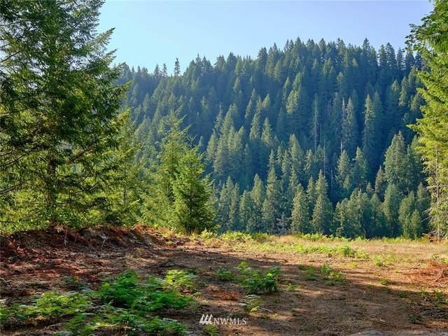 2 Loowit Lane, Cougar, WA 98616 (#1834044) :: Pacific Partners @ Greene Realty