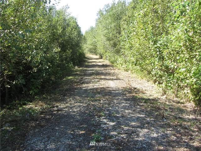 0 XXX Humphrey Hill Road, Sedro Woolley, WA 98284 (#1834048) :: Ben Kinney Real Estate Team