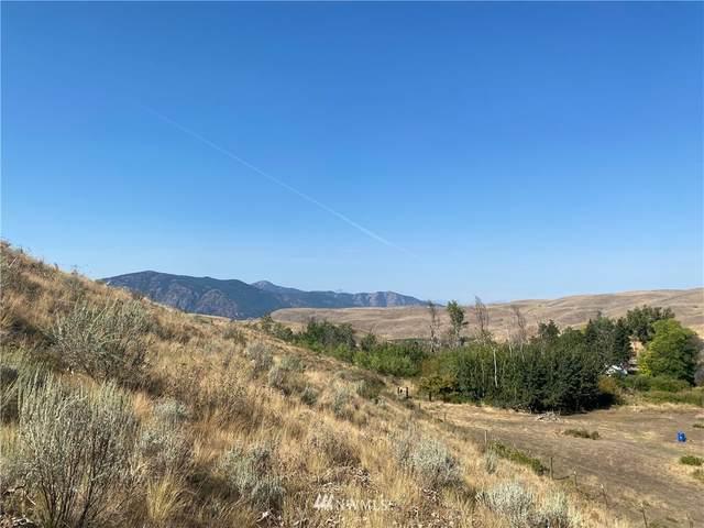 20762 Highway 20, Twisp, WA 98856 (#1834132) :: Neighborhood Real Estate Group
