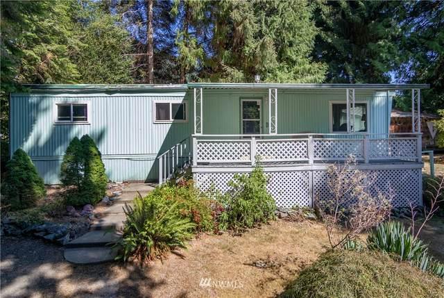 301 Appaloosa Drive, Brinnon, WA 98320 (#1834372) :: Pacific Partners @ Greene Realty